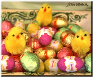 Chocolate_Eggs