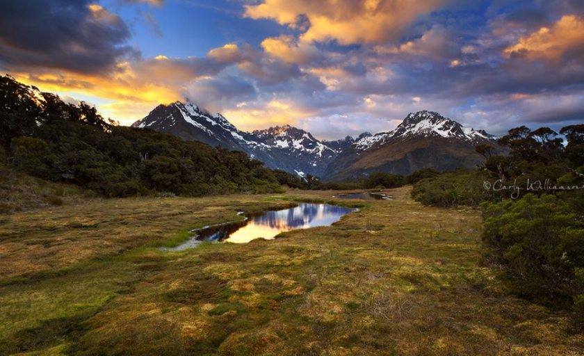 Key Summit on the Routeburn Track by photographer Carly Williamson